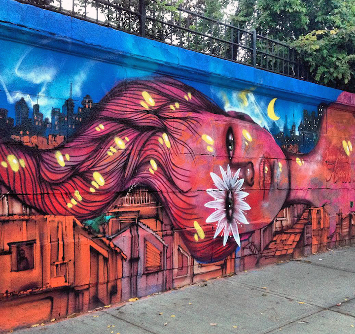 panmela-castro-street-art-bronx-nyc