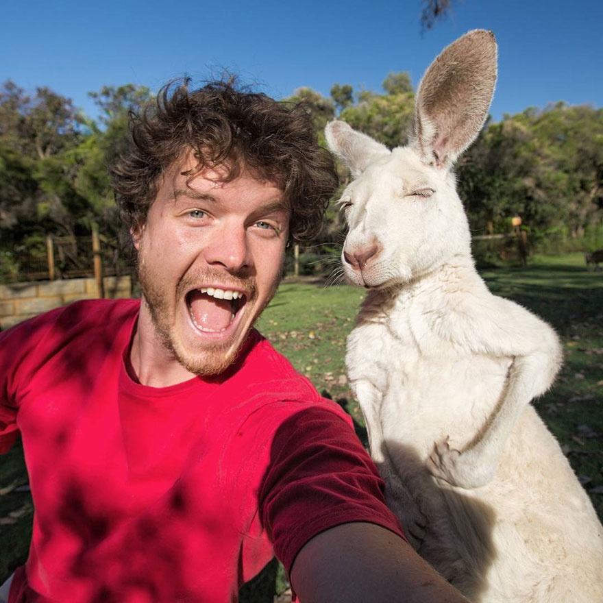 179105-funny-animal-selfies-allan-dixon-11-880-a542d8629a-1478517753