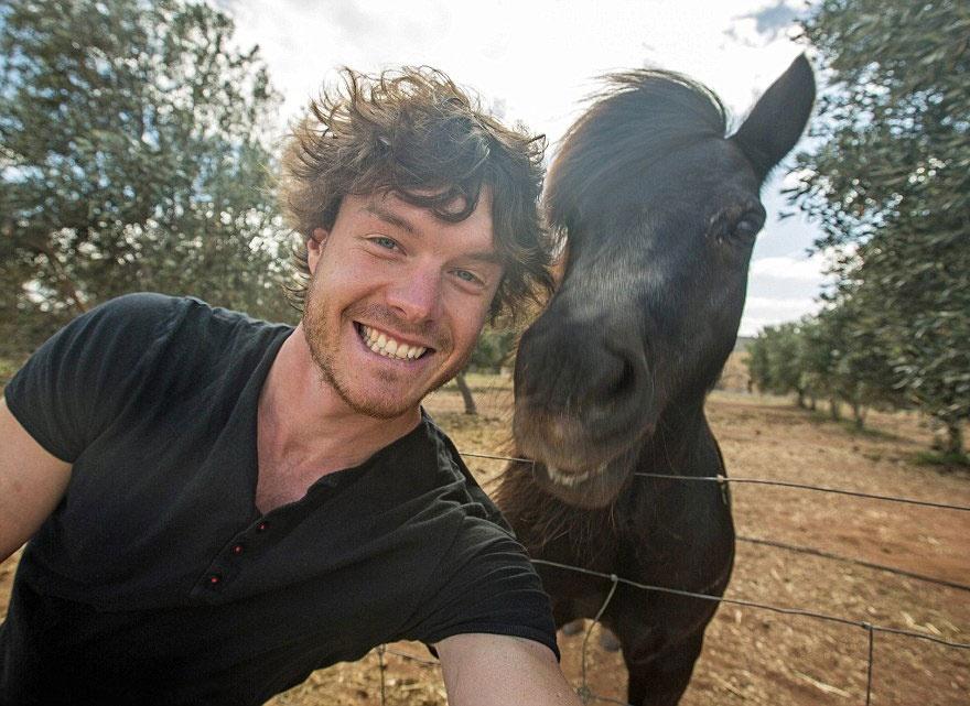 179205-funny-animal-selfies-allan-dixon-19-880-a542d8629a-1478517753