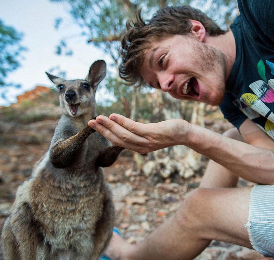 179255-funny-animal-selfies-allan-dixon-21-880-a542d8629a-1478517753