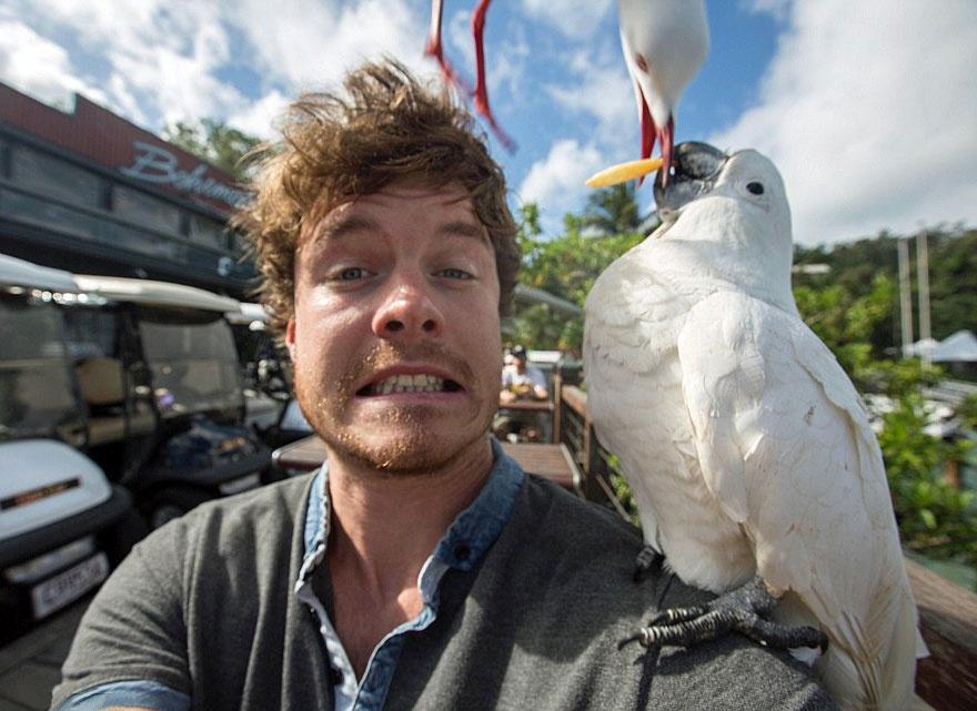 179455-funny-animal-selfies-allan-dixon-261-880-a542d8629a-1478517753