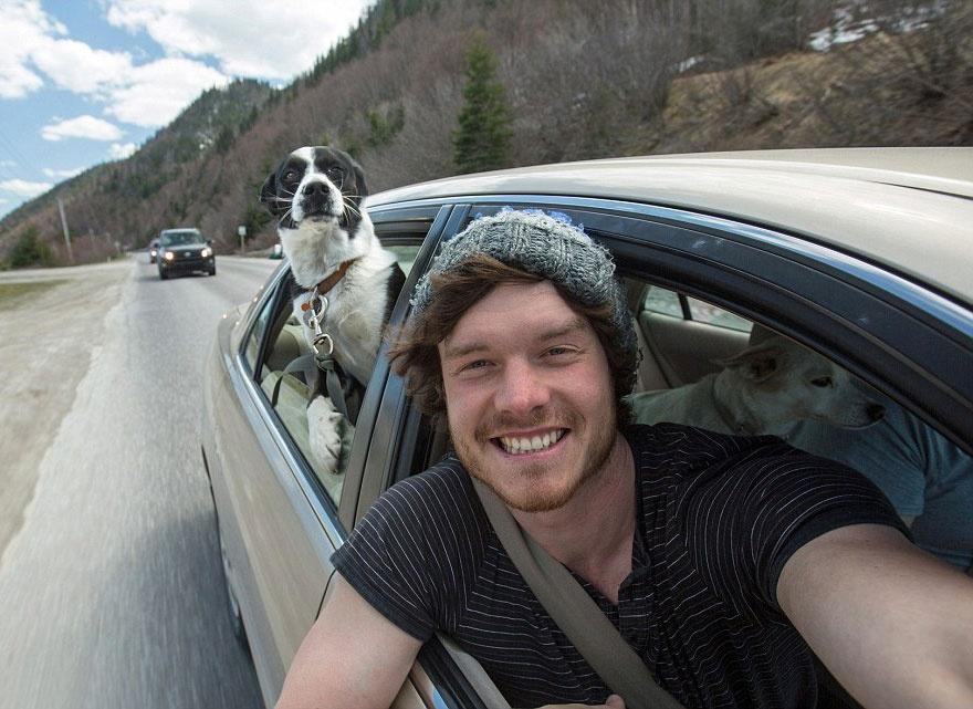 179505-funny-animal-selfies-allan-dixon-23-880-a542d8629a-1478517753