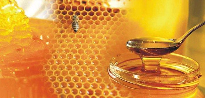 greek-honey